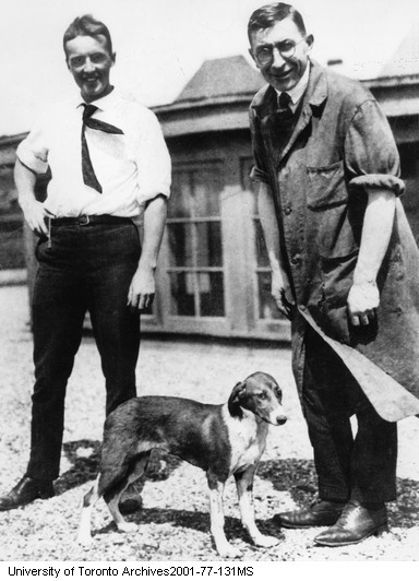 Banting, Best and dog