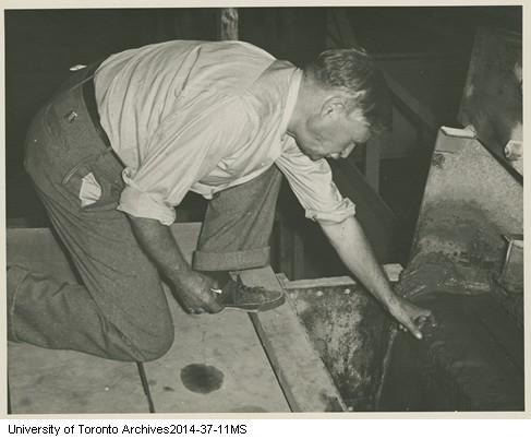 Herbert Edward Terrick Haultain, 1869-1961