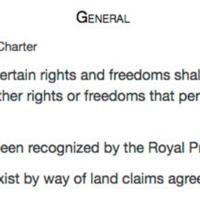 constitution s 25.jpg