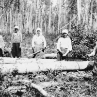 Ukrainian women cutting logs, Athabasca, Alberta